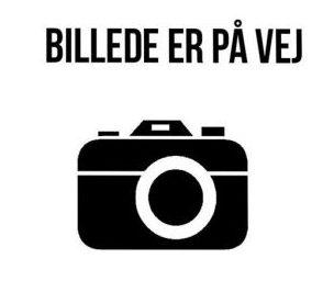Sune Brink Nielsen
